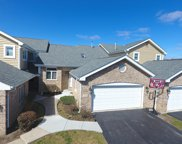 17322 Brook Crossing Court, Orland Park image