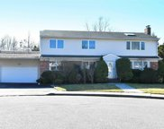 15 Maxwell  Court, Plainview image