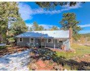 19693 Silver Ranch Road, Conifer image