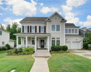 817 Elswick  Court, Fort Mill image