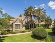 11081 Coniston Way, Windermere image