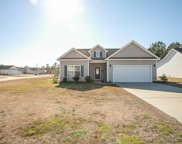 180 Family Farm Rd., Conway image