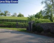 4349 Ravens Crest Lane, Lexington image