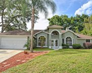 1650 Imperial Palm Drive, Apopka image