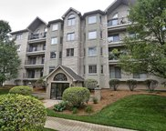 11901 Windemere Court Unit 303, Orland Park image