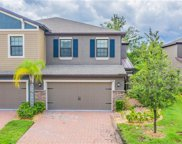 17357 Old Tobacco Road, Lutz image