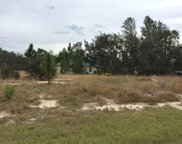 221 Fig Court, Poinciana image