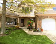 20 Willow Parkway, Buffalo Grove image