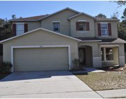 10635 Boyette Creek Boulevard, Riverview image