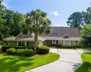 7 Hickory Nut  Court, Hilton Head Island image