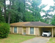 510 Huckleberry Trace, Ball image