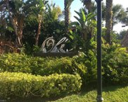 9145 Chula Vista St Unit 13004, Naples image