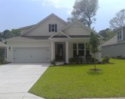 1118 Oak Marsh Ln., North Myrtle Beach image
