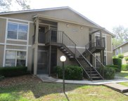 14407 Hanging Moss Circle Unit 202, Tampa image