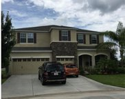 30309 Hackney Loop, Mount Dora image