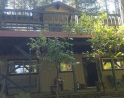 6080  SPECKLED, Pollock Pines image