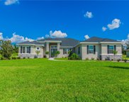 10914 Brice Tree Court, Lithia image