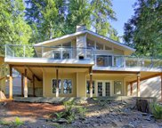 25612 SE Tiger Mountain Rd, Issaquah image