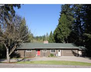 13125 SW 124TH  AVE, Tigard image