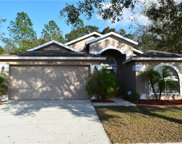 4832 Copper Canyon Boulevard, Valrico image