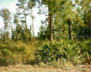Choctaw Trail, Kissimmee image