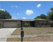 3101 Clovewood Place, Seffner image