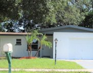 4122 E 99th Avenue, Tampa image