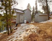438 Potlatch Trail, Woodland Park image