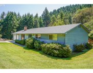 451 WOODRUFF MOUNTAIN  RD, Roseburg image