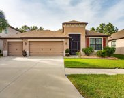 8444 White Poplar Drive, Riverview image
