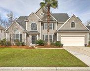 2152 Tall Grass Circle, Mount Pleasant image
