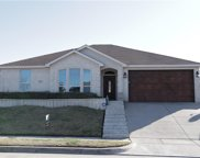 9977 Peregrine Trail, Fort Worth image