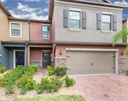 17335 Old Tobacco Road, Lutz image