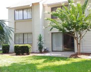 25 Deallyon Avenue Unit #147, Hilton Head Island image