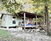 197 County Road 3150, Colmesneil image