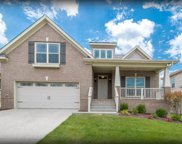 1002 Claymill Dr. #720, Spring Hill image