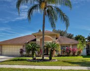 15103 Redvale Drive, Tampa image