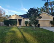 35 Powder Hill Ln, Palm Coast image