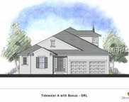 7518 Mandarin Grove Way, Winter Garden image