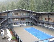 33000 Crystal Mountain Blvd Unit 114, Greenwater image