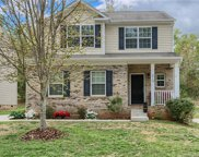 219  Anvil Draw Place, Rock Hill image
