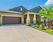 12215 Ballentrae Forest Drive, Riverview image