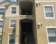 2301 Butterfly Palm Way Unit 301, Kissimmee image
