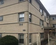 7308 North Harlem Avenue Unit 302, Chicago image