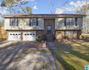 7314 Thomas Hall Dr, Trussville image