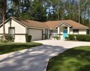 141 Ryan Drive, Palm Coast image