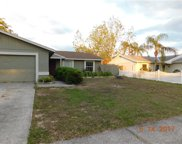 1407 Piney Branch Circle, Valrico image
