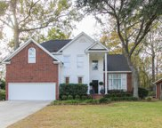 2092 Middleburg Lane, Mount Pleasant image
