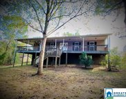 12869 Braswell Dr, Mccalla image