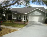1189 Gillespie Drive N, Palm Harbor image